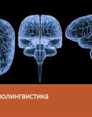 'Нейролингвистика: краткое описание и основные идеи