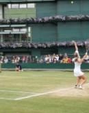 'Как стать теннисистом и каковы шансы дорасти до уровня профи