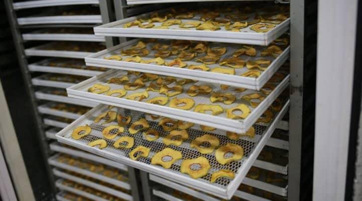 Фруктовые чипсы как бизнес