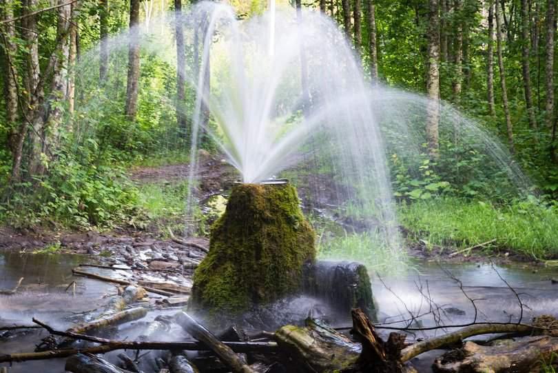 Западный бизнес план производства бутилированной воды